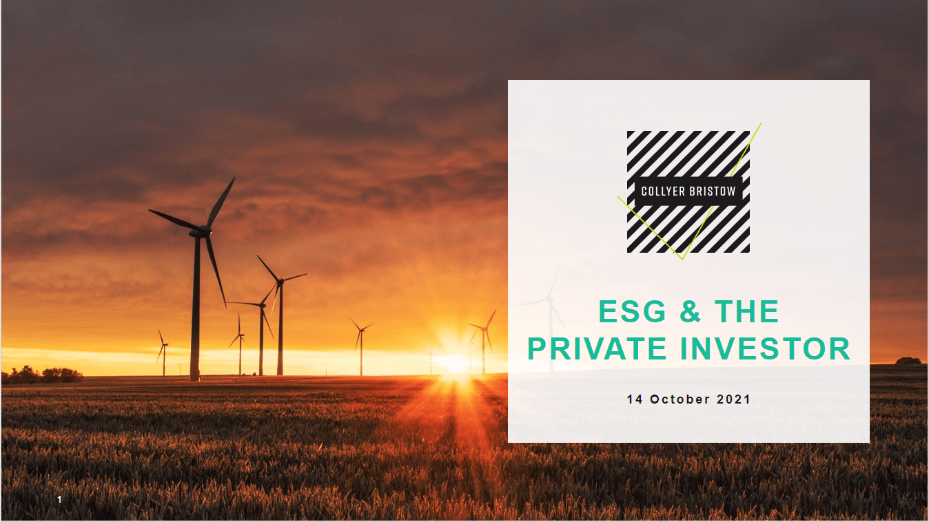 To what extent are ESG credentials considered when making investment decisions?